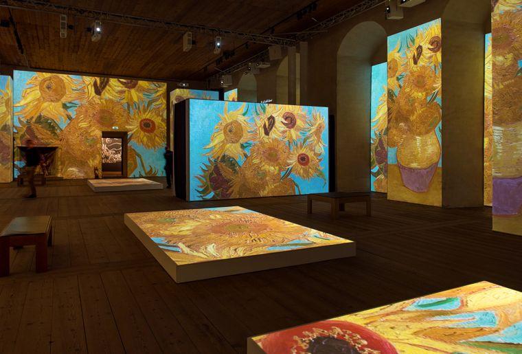 Van Gogh Alive 4.jpg