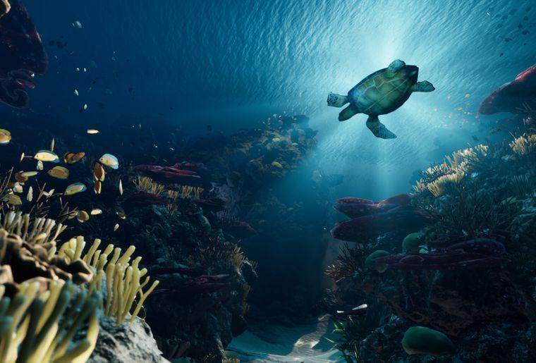 VR-Erlebnis_Reef-Dive_1©somniacs.jpg