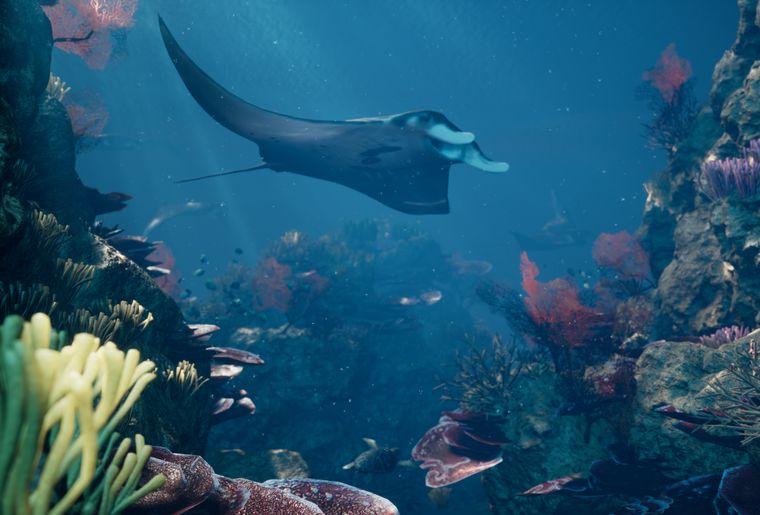 VR-Erlebnis_Reef-Dive_2©somniacs.jpg
