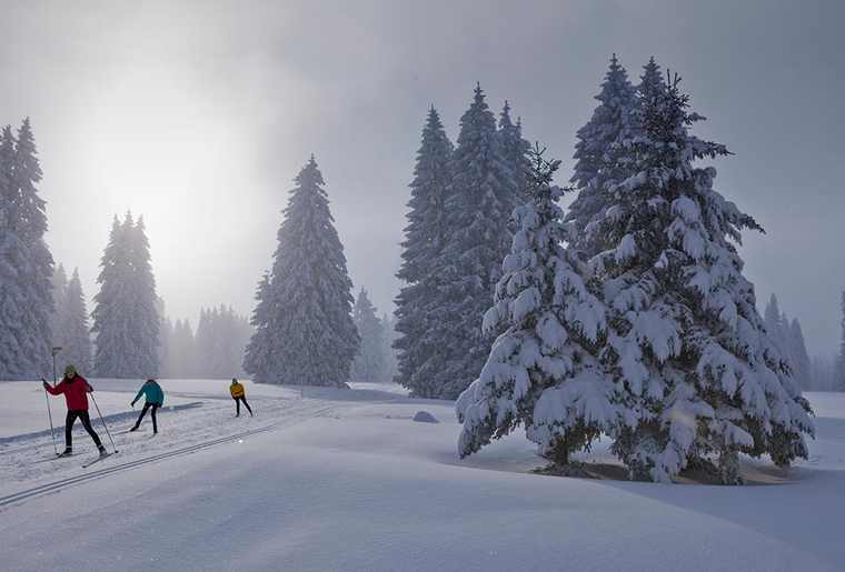 Chemins de fer du Jura Skilanglauf.png