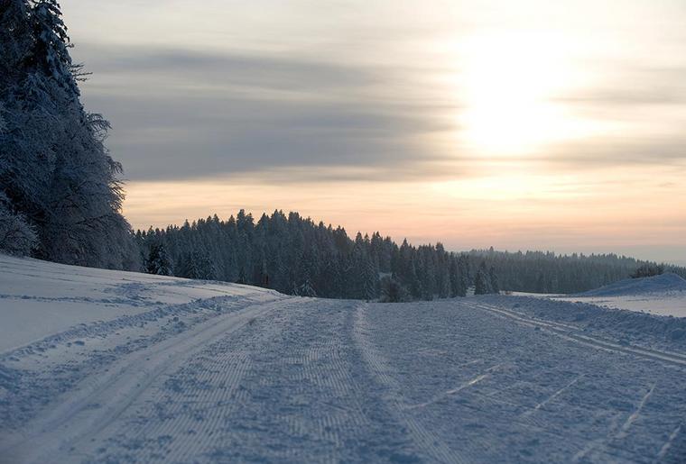 Chemins de fer du Jura Skilanglauf 3.png