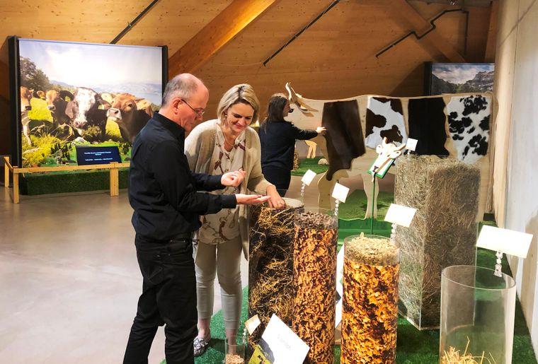 Wechselausstellung VOM GRAS ZUR MILCH in der Umwelt Arena, bis 29.3.2020.jpg