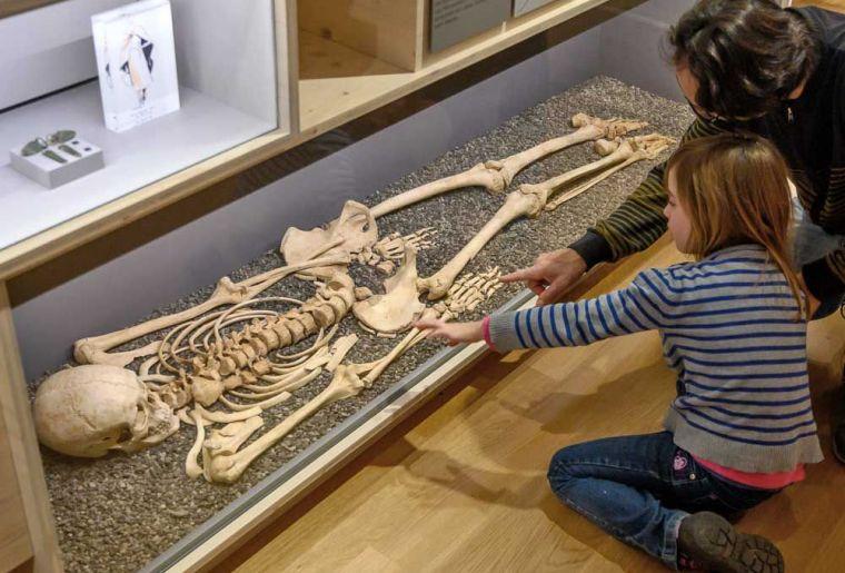 Archäologisches Museum Olten.jpg