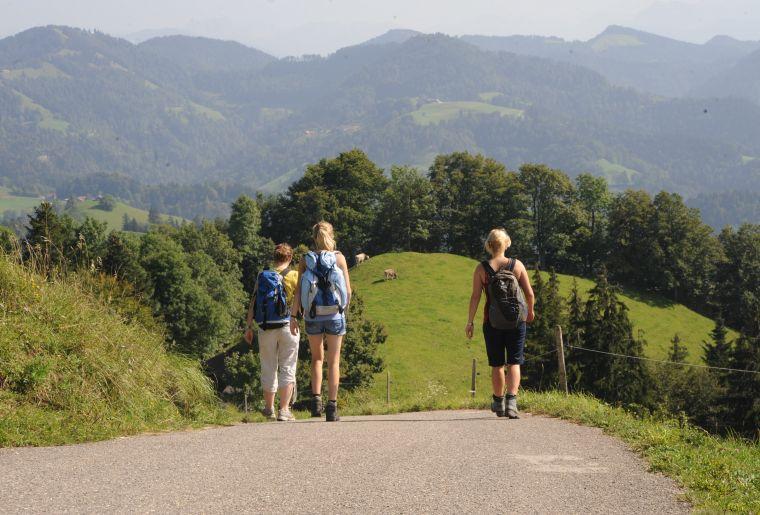Wandern im Sommer auf dem Hoernli