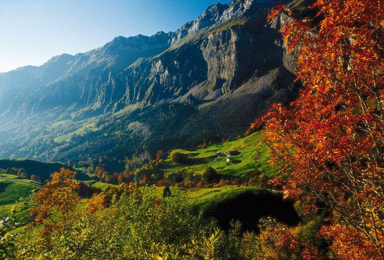Blick ins Muotatal, Kanton Schwyz, vom Pragel her kommend.