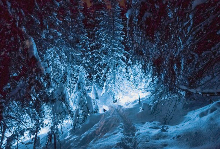 Zauberweg Gstaad 6.jpg