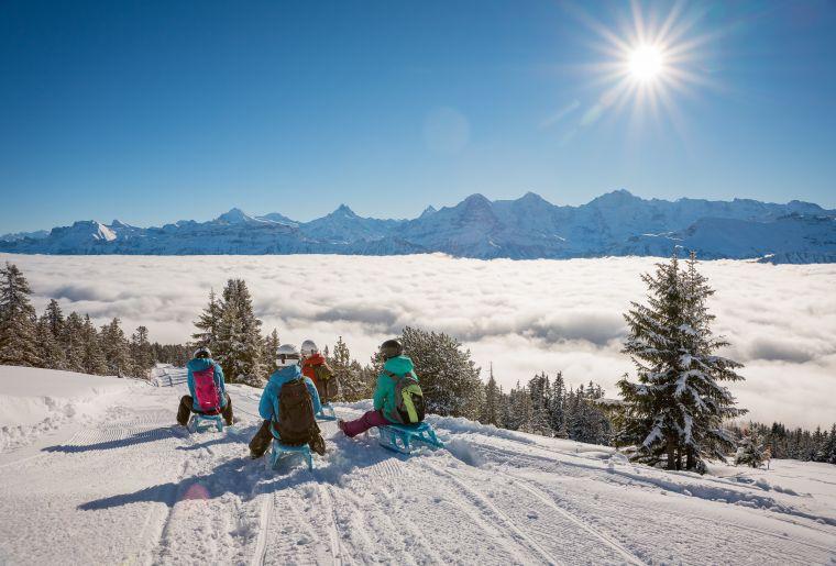 niederhorn-schlitteln-gruppe-winter-nebelmeer-winteraktivitäten.jpg