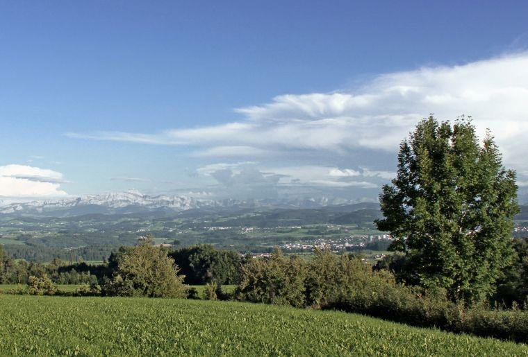 Barfuss- und Panoramaweg Nollen 4 c Thurgau Tourismus .jpg