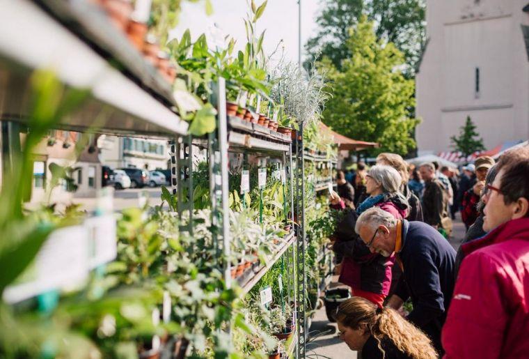 Entlebucher Kräuter- und Wildpflanzenmarkt 3.jpg