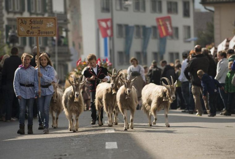 csm_entlebucher-alpabfahrt-volksfest-trachten-ziegenherde_d1cb5595a2.jpg