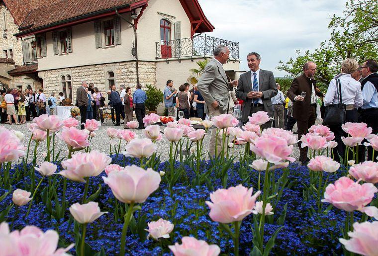 Schloss Wildegg 3.jpg