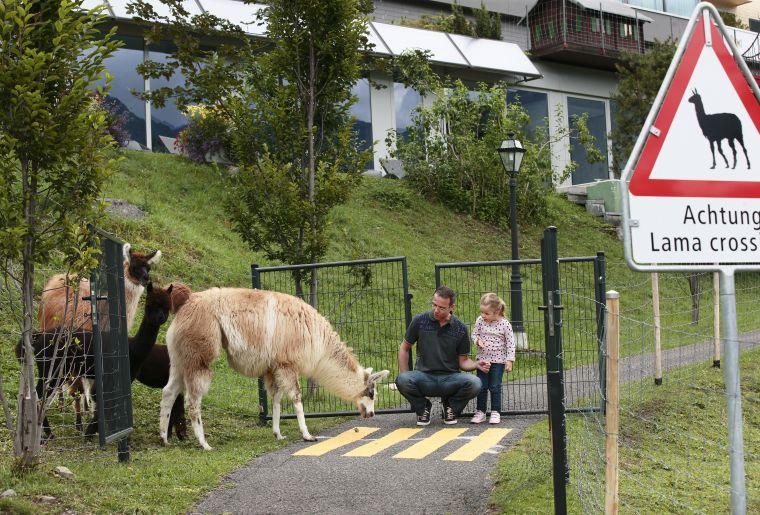Tierliparcours Brauwald 2.jpg