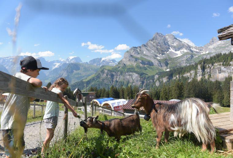 Tierliparcours Braunwald 3.jpg