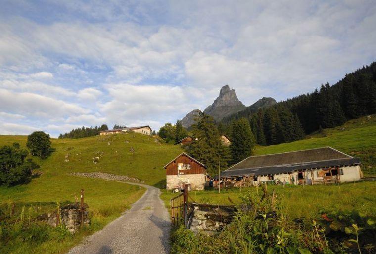 Braunwaldalp - © Agrotourismus.jpg