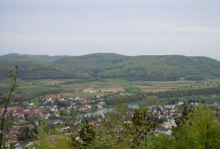 Aussicht zum Rhein.jpg