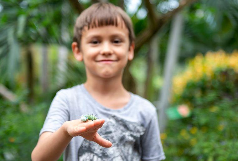 papiliorama-zoo-parc-activite-enfant-famille.jpg
