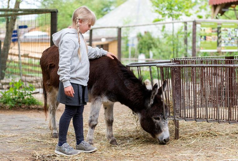 papiliorama-animaux-ferme-parc-zoo.jpg