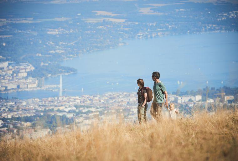 Mont Saleve.jpg