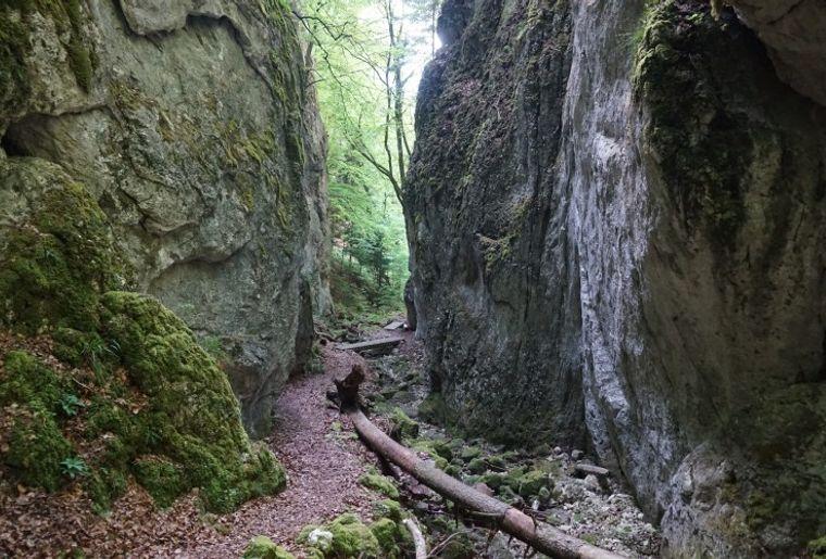 Naturpark Thal 2.jpg