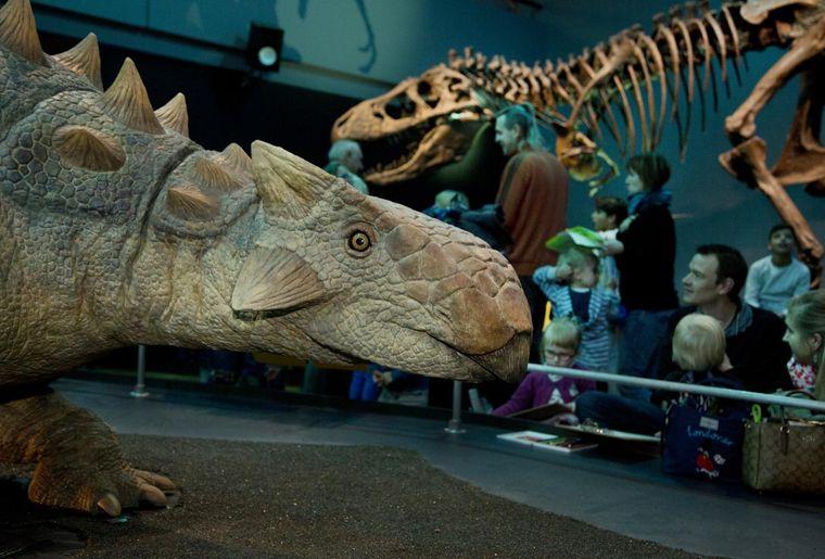 T.rex Familientag_KU3B1577_g_0.jpg