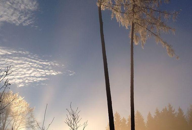 Parc naturel périurbain du Jorat - © Roland Rapin.jpg