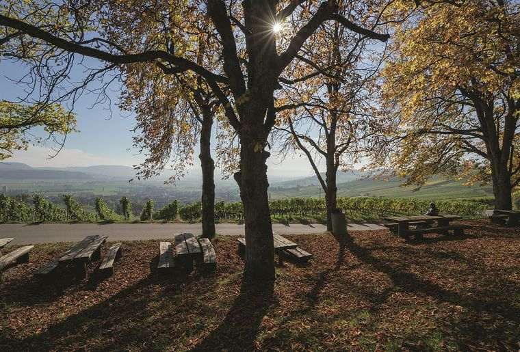 Naturpark Schaffhausen - © Switzerland Tourism-BAFU Renato Bagattini.jpg