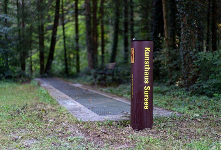 Kunsthaus Sursee Wald 2020.jpg