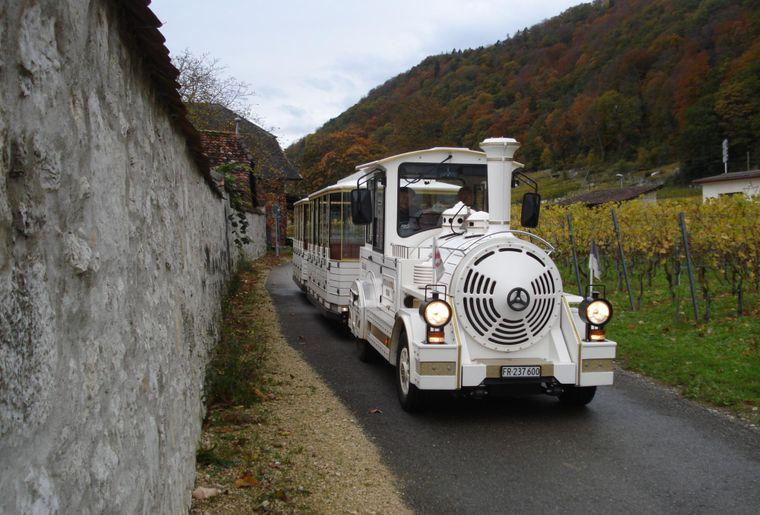 Rebenbahn 2.jpg