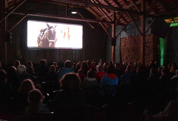 Kino Sihlwald.jpg