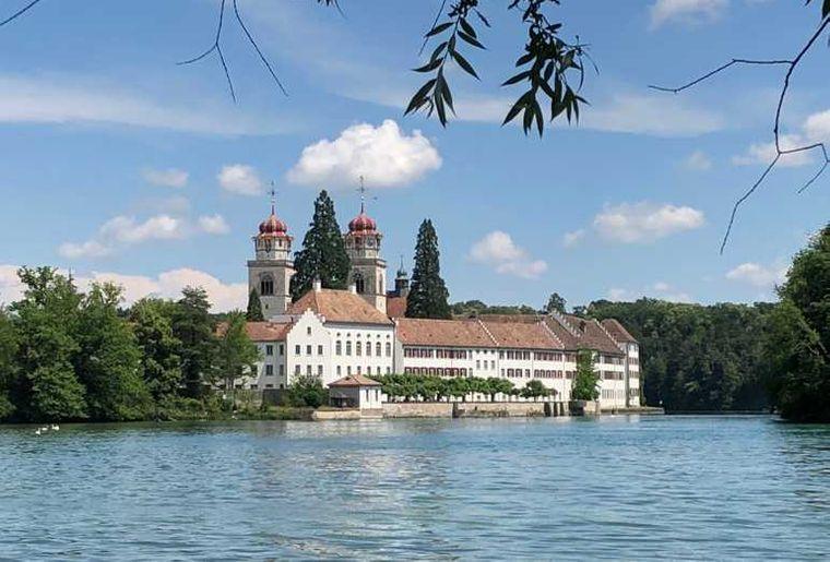 Zürcher Weinland Rheinau.jpg