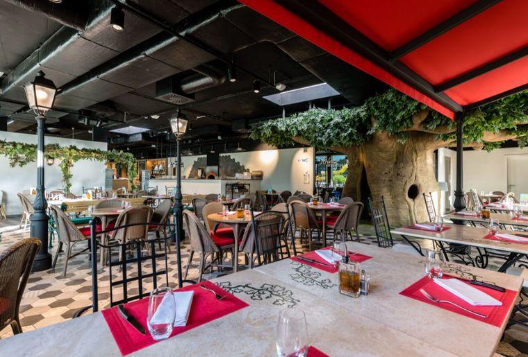 Bains-de-Saillon-restaurant-piazza-grande-arbre-magique©nuno-acacio-RVB_LOW.JPG