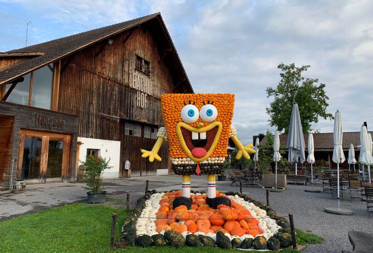 Kürbisausstellung Juckerhof 2020 1.jpg