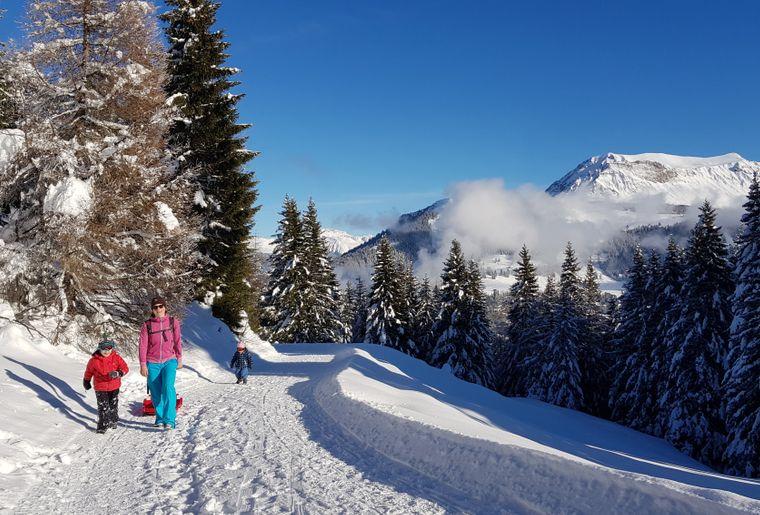 winterwandern_brambruesch_michaelchrist (14).JPG