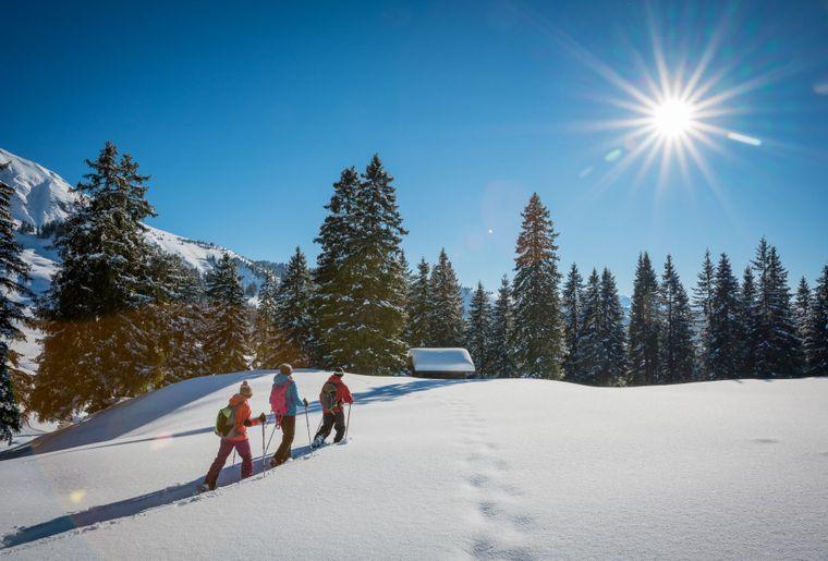 habkern-lombachalp-winter-schneeschuhlaufen-wald-hüttli-soft-adventure_1436x958px.jpg