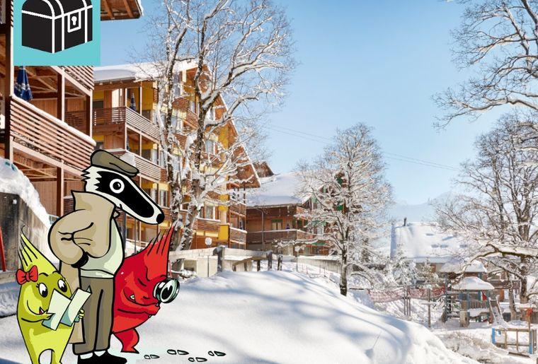 Startbild_Hasliberg_Winter_klein.jpg