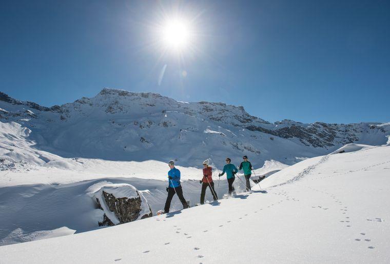 Schneeschuhlaufen 03 (c) Engstligenalp.jpg