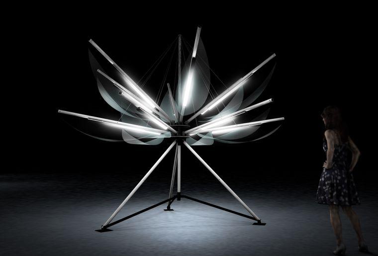 morat-illumine-lotus.jpg