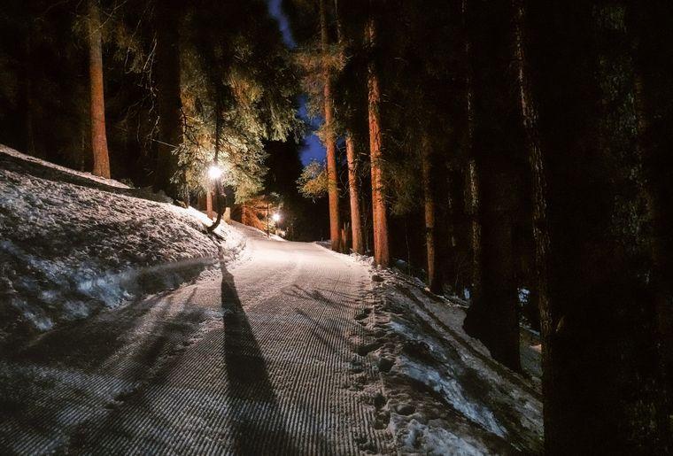 Winterwanderung Jaunpass