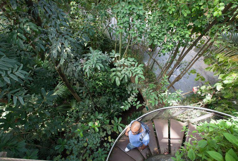 papiliorama-kerzers-chietres-tropical-zoo-papillon-1.jpg