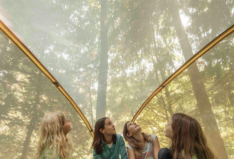 (c) Skepping_Kinderlager im Baumzelt_Eine Unterkunft mitten im Wald.jpg