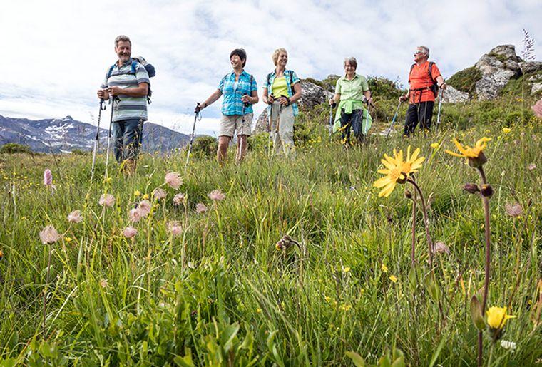 Lenk-Simmental_Senior_Alpenblumenweg_Leiterli_Lenk-Foto_Mathias_Kunfermann_©Lenk_Bergbahnen_MK_1317_790x444_acf_cropped-2.jpg