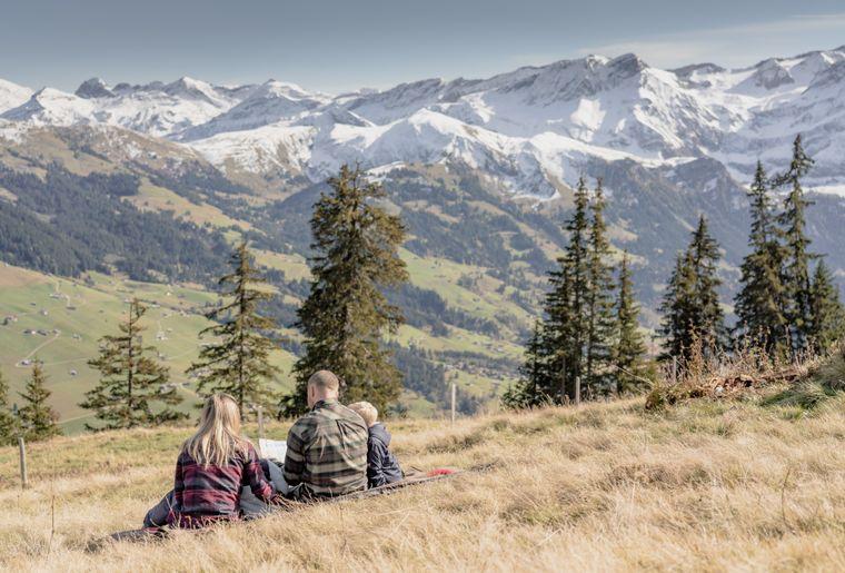 Gstaad Sommer 1.jpg