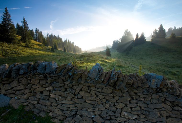 Ausflug zum Col de Marchairuz - Combe des Amburnex c Suisse Tourisme Roland Gerth.jpg