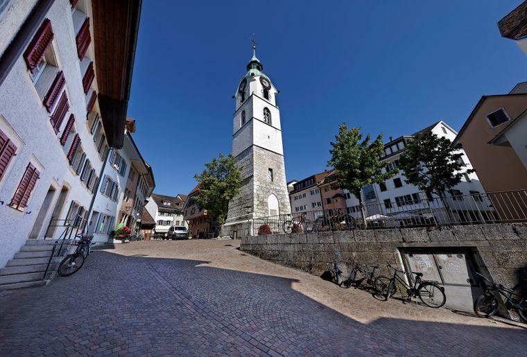 Altstadt_Sommer_Gebuesch_027.jpg