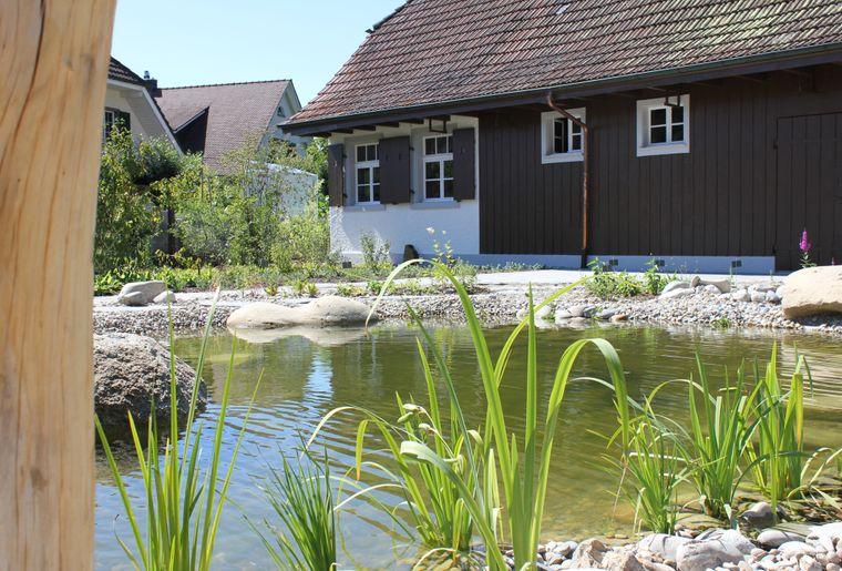 tourismusrheinfelden-erholen-eden-achtsamkeitsgarten-teich.jpg