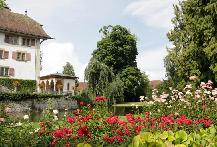 Schloss Landshut 3.png