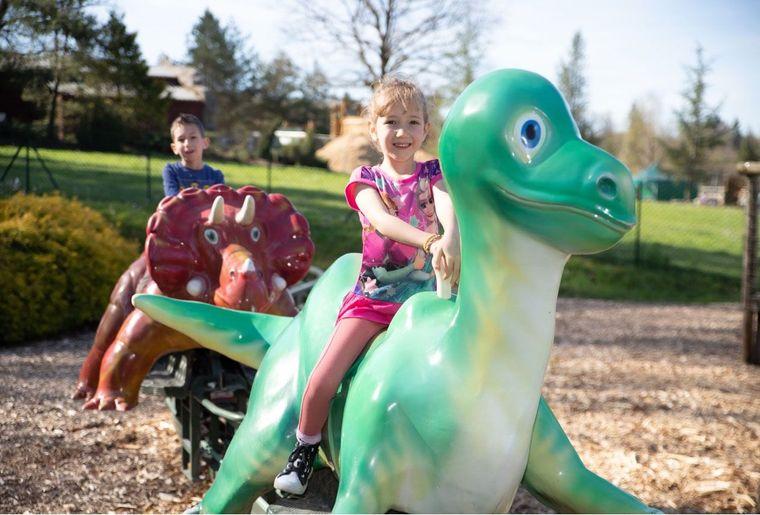 Dino-Zoo 4.jpeg