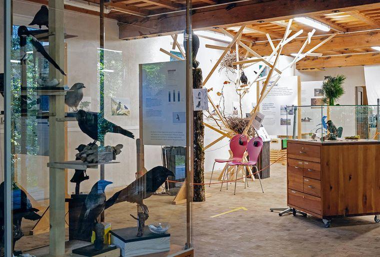 Naturzentrum Eichholz Ausstellung c Matthias Sorg.jpg