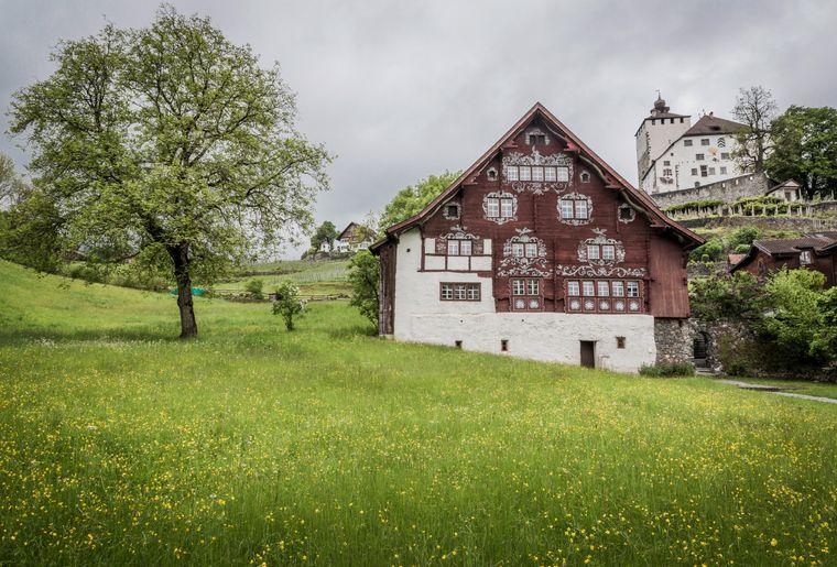 Schlangenhaus_Werdenberg┬®Daniel_Ammann_002.jpg