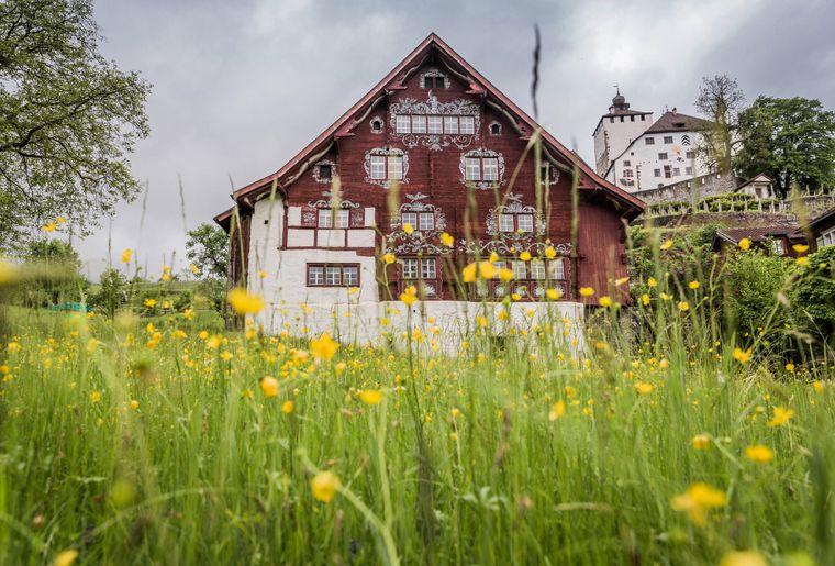 Schlangenhaus_Werdenberg┬®Daniel_Ammann_006.jpg